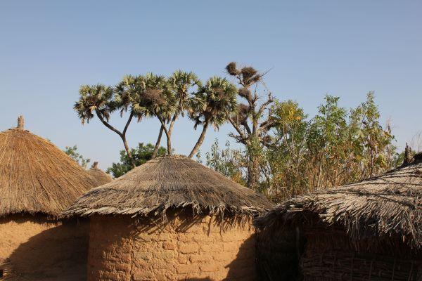 Typische Rundbauten im Dorf Dori - Juni 2014